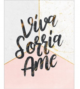 Placa Decorativa Viva Sorria Ame