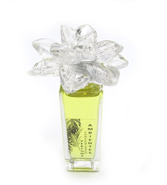 Perfume Concentrado para Difusor - Baxiir Oriental