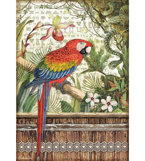 Papel de Arroz A4 - Papagaio da Amazónia